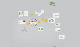 Copy of Татварын хяналт шалгалтын үйл ажиллагааны журам