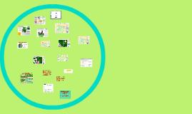 Mapeamento da ilegalidade na exploração madeireira 2013/2014