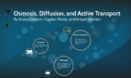 Osmosis, Diffusion, and Active Transport