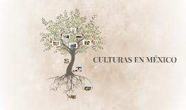 CULTURAS EN MÉXICO