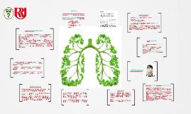 Copy of Tuberculose