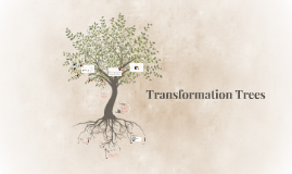 Transformation Trees