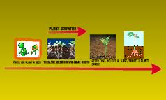 plant growth!
