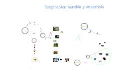 Copy of Respiración Aerobia y Anaerobia