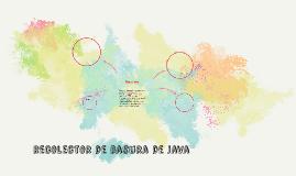 Copy of Basurero de Java