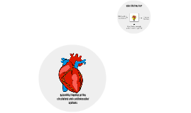 Scientific theories of the circulatory and cardiovascular sy