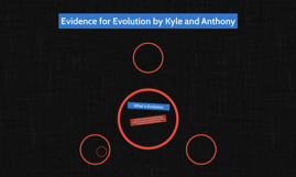 Evidence for Evolution by Kyle and Anthony