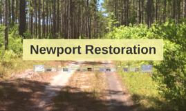 Newport Restoration