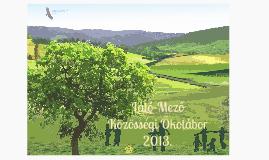 Copy of Copy of Látó-Mező Közösségi Ökotábor 2013