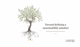 Toward defining a sustainability mindset