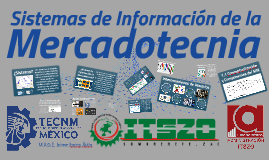 1.1 Conceptualización y Componentes del SIM