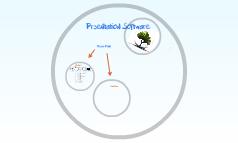 Präsentations Software