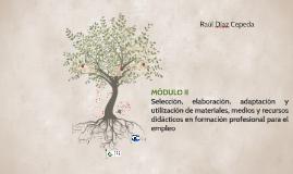 MÒDULO II. UD 4 Utilización de la web como recurso didáctico