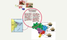 Copy of colonização espanhola