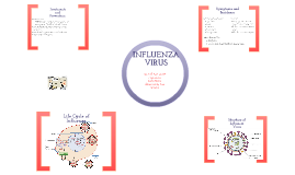 Copy of Influenza Virus