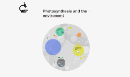 Photosynthesis and the enviroment