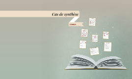 Copy of Cas de synthèse : PATAGONIA