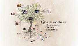 Copy of Caracteristicas y tipos de   montajes