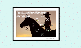 Copy of The Cell & Horse, rider, and ranch