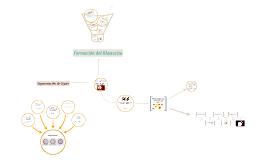 Primera y Segunda Semana del Desarrollo Embrionario