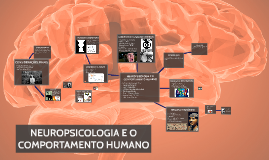 NEUROPSICOLOGIA E O COMPORTAMENTO HUMANO