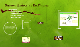 Copy of Sistema Endocrino En Plantas