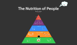 The Nutrition of People