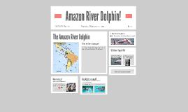 Amazon River Dolphin!
