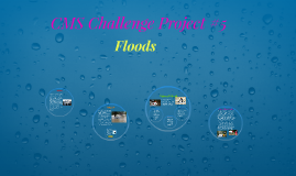 CMS Challenge Project #5