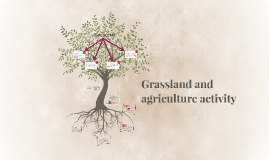 Grassland and agriculture activity