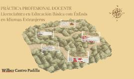 Copy of PRÁCTICA PROFESIONAL DOCENTE
