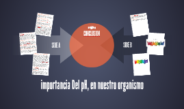 Copy of importancia Del pH, en nuestro organismo