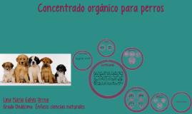 Copy of Proyecto de Grado  Concentrado organico para perros