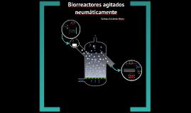 Copy of Biorreactores de agitacion neumática