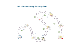 Ch. 2 Regulation of Fluids- Shift of water among the body fluids.
