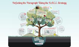 Copy of R.A.C.E. Strategy