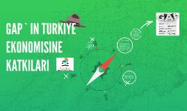 GAP`IN TURKIYE EKONOMISINE KATKILARI