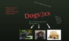 Dogs:)xx
