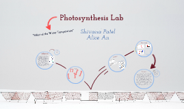 Photosynthesis Lab Presentation