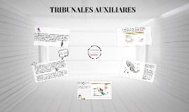 TRIBUNALES AUXILIARES