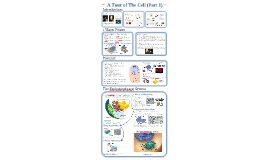 Copy of AP Bio- Cells 1:  Intro & Endomembrane System