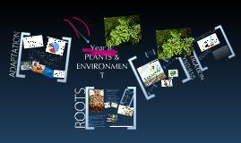 Year 8: PLANTS