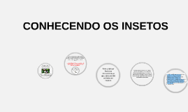 CONHECENDO OS INSETOS