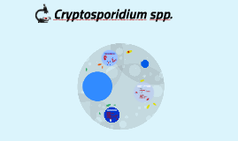 Cryptosporidium spp.
