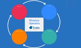 Eficiencia Operativa