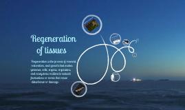 regeneration of tissues