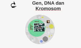 Gen, DNA dan Kromosom