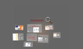 Copy of Trichomonas
