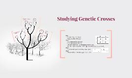 SBI3U - Analyzing Genetic Crosses: Punnet Squares