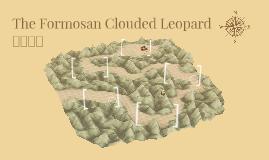 The Formosan Clouded Leopard